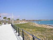 Playa Flamenca Villa for Sale
